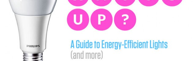 A Guide to Energy Efficient Lightbulbs