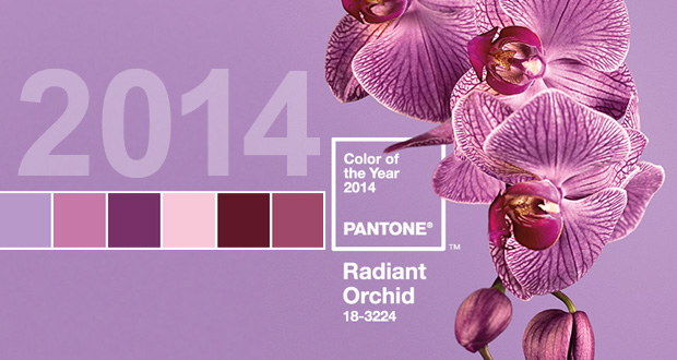 Blog.equityapartments.com » Radiant Orchid In Bloom