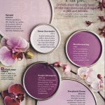 Source: Better Homes and Gardens - January 2012