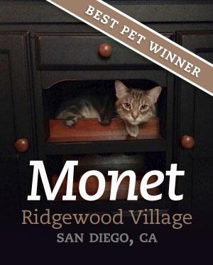 bestpet_monet