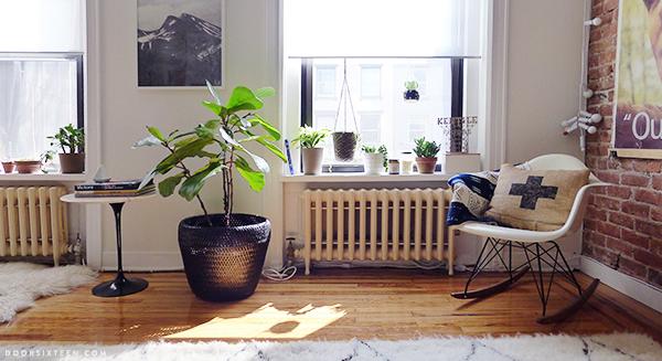 doorsixteen_apartmentplants_03